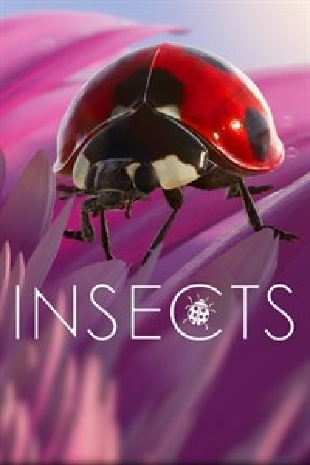 Insects X S